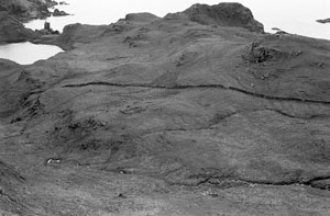 Fig. H9.7. Papadil from the north-east. The pinnacle can be seen in the left background. In the centre , in front of the wall, is the possible church site (SC 1093048, dated 1983. Crown Copyright: RCAHMS)